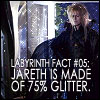 glitter!Jareth
