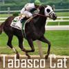 Tabasco Cat