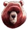 red56bear userpic