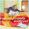 Chi - cushion