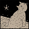 кот. звёзды