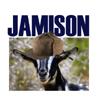 sighland_jamison