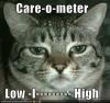 Caremeter