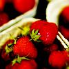 stock: strawberries ☼ where's victoria?