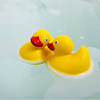 duckin_awesome userpic