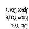 chi_dori
