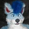 spectrawolf userpic