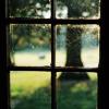 maryland window
