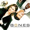 Bones en español