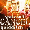 You can't cancel Quidditch