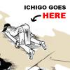 nehalenia: ichigo goes here