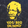 big dummy ‡ that's what you are