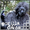 gorilla_chica userpic