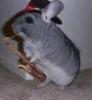 jiggy6454 userpic