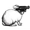 wrabbit: gunbun