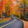 geri: autumn road