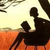 sunsetbook
