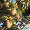 Mango Grove:  Where Wild NaNoMangOs Grow!
