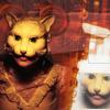 the_cat_spirit