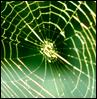 greeninferno userpic