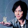 maru - butterfly