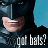 batman: got bats?