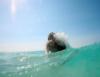 Ocean Birth