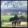 calcitrix: explore