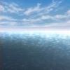 calcitrix: water