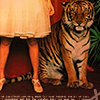 tiger by skirt