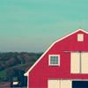 fende farm ✖