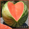 1sheep: heart