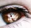 sheerenigma userpic