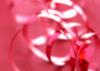 faewryter userpic