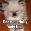 EvilFluffy