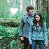 twilight - edward/bella forest heart