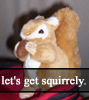 getting squirrely
