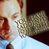Stupidity makes Josh sad