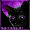 Shadows Kittie