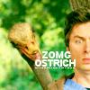 ZOMG Ostrich