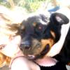havehope24 userpic