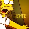 DC: Simpsons - Homer