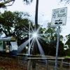 Tram: Royal Park sign