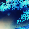 dragon_fairie userpic