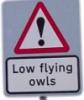 lowflyingowls