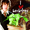 hp: neville hearts herbology