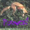 pounce