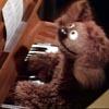 Ashfae: Muppets - Rowlf