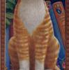 Рыжая кошка белая грудка