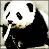kurayamide userpic